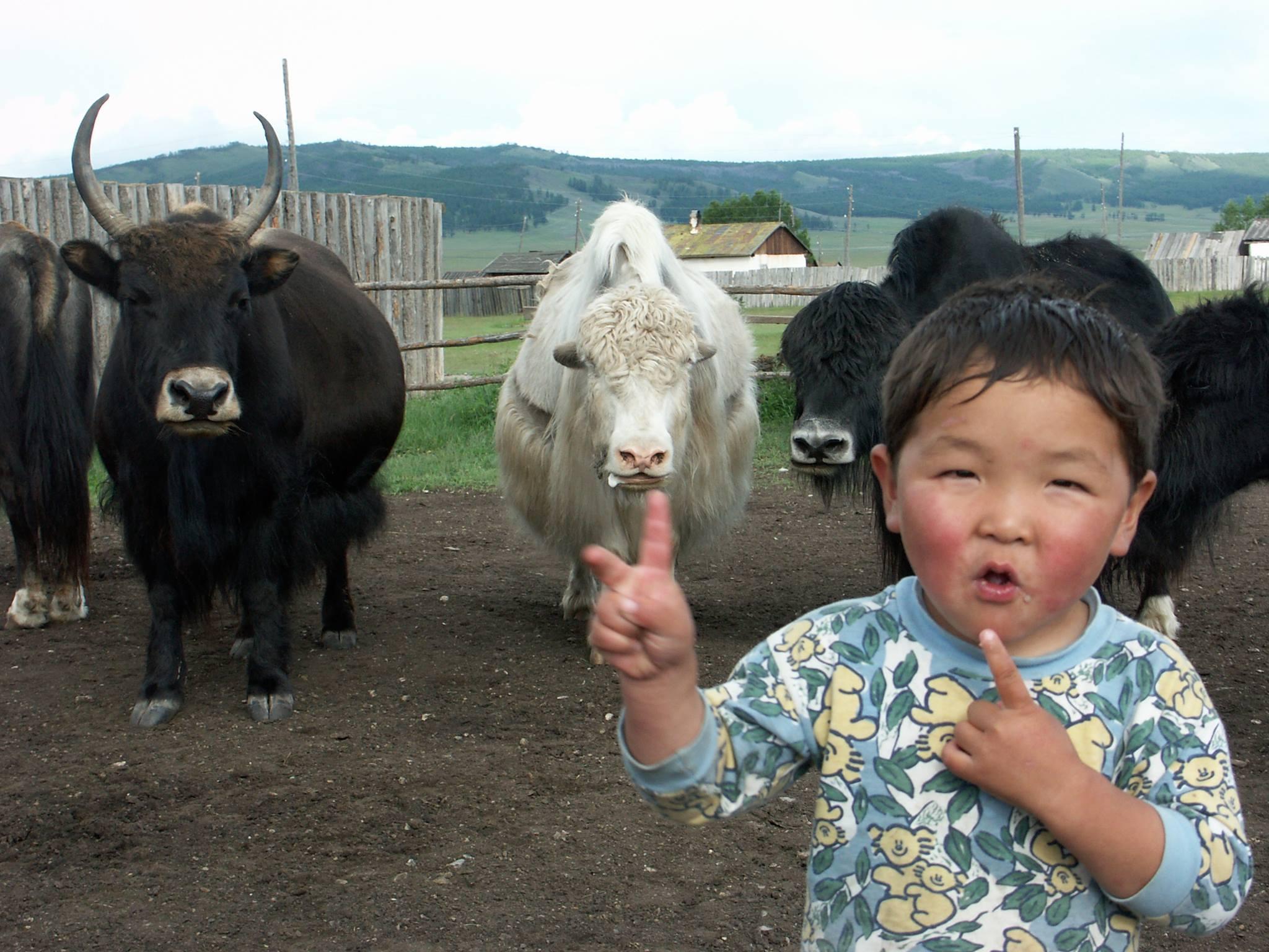 Mongolian Handicraft Trade Fair Yak