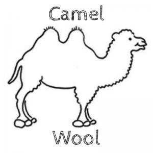 Mongolian Handicraft Trade Fair camel