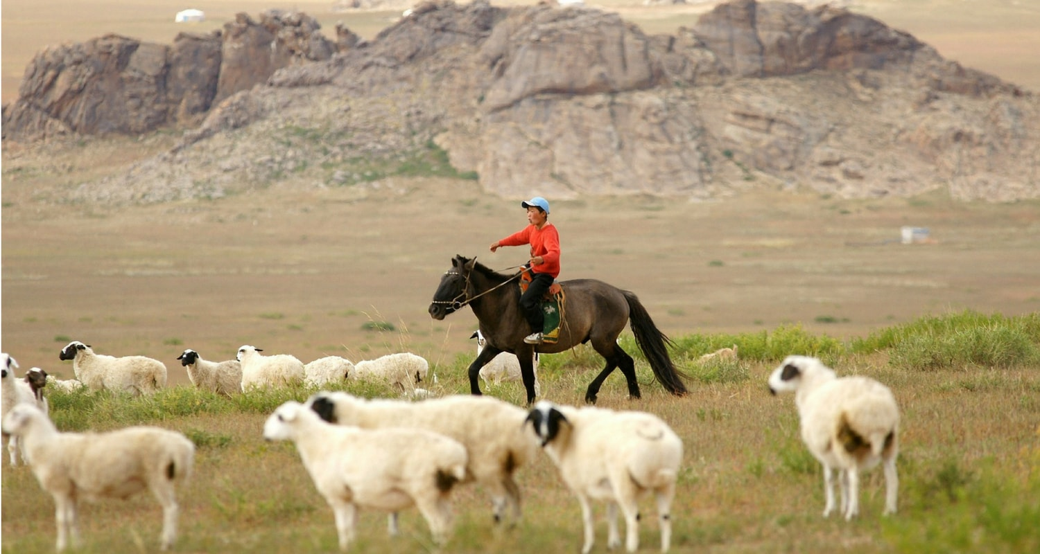 Mongolian Handicrafts sheep Wool trade fair
